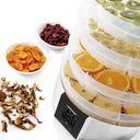 Сушилка для овощей и фруктов Zelmer ZFD2350W — фото, картинка — 2