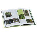 Основы создания сада. Из опыта английских цветоводов — фото, картинка — 1